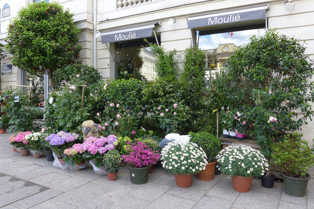Moulie Flower Shop Paris Place du Palais Bourbon
