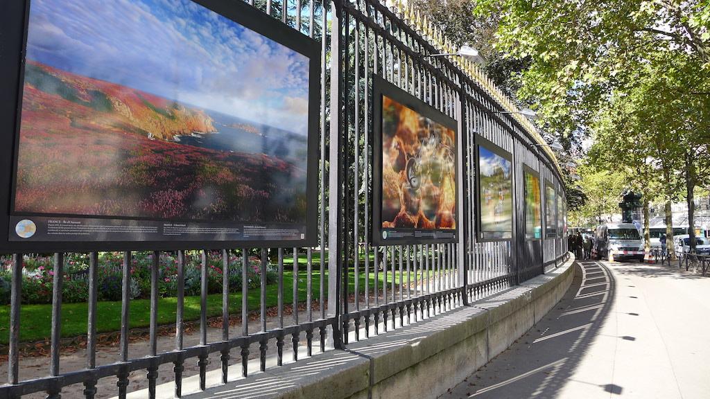 Up and down the montagne sainte genevi ve in paris good morning paris the blog - Jardin du luxembourg exposition ...