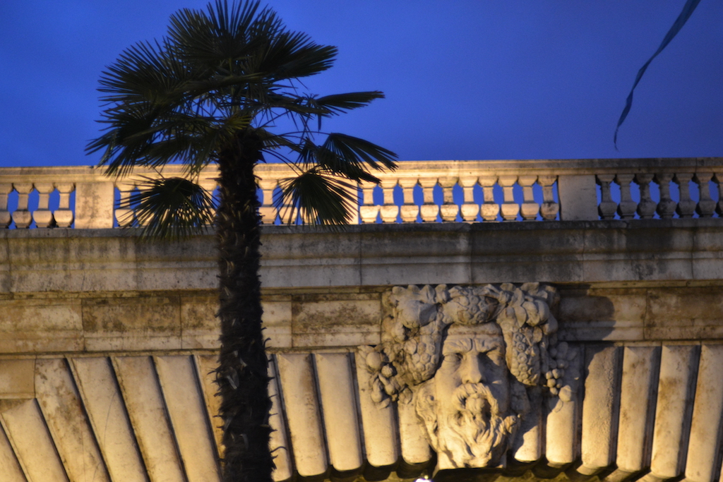 Paris Plages : a palm tree in front of the Pont Notre Dame