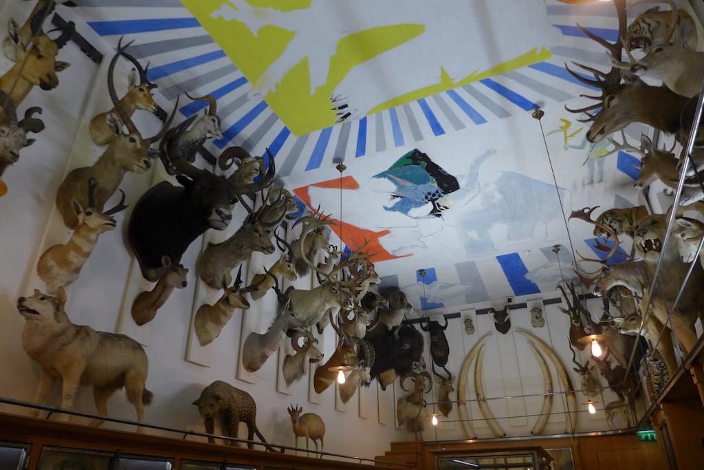 Musee de la chasse et de la nature - Salle des Trophées